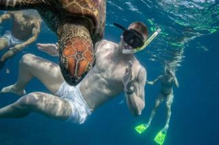 Adam Peaty of England swims with a green turtle.