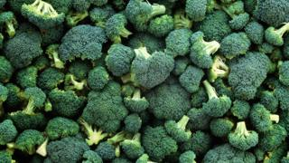 Several heads of broccoli