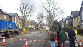 Tree felling, Sheffield