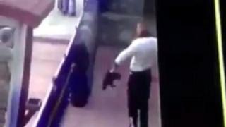 Erzincan'dan kediye işkence görüntüleri