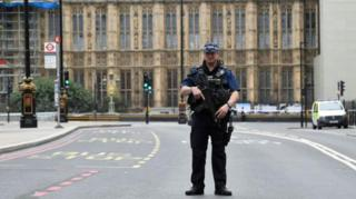 Police outside Houses of Parliament after car crash on 14 August 2018