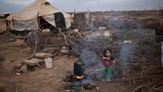 Syrian refugee Aysha Elwan, 5, helps her mother to break wood for a fire outside her family's tent at an informal settlement on the Syria-Jordan border at Mafraq