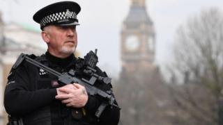Британиянын полициясы
