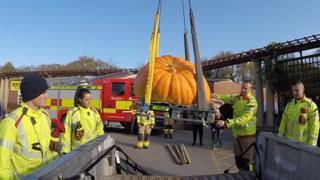 Large pumpkin is moved using an aerial ladder platform