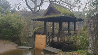 Saumarez Park Japanese fishing hut