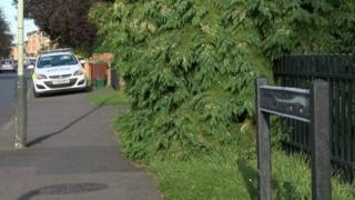 Shakespeare Road Cheltenham