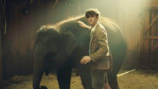 A scene from Zoo