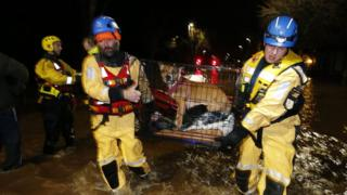 A dog is rescued from a flooded house in Carlisle.