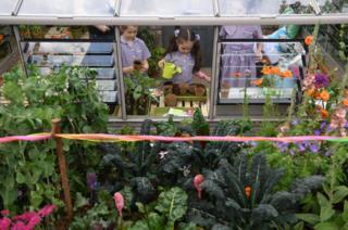 Children play in the Montessori Centenary Children's Garden