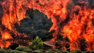 Пожарные борются с огнем в окрестностях греческих Афин (в июле 2018-го там погибло по меньшей мере 74 человека)