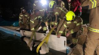 The pony is pulled from the pool by firefighters
