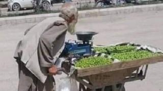 Kandahari Old Man