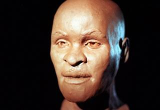 Reconstruction of the head of Luzia