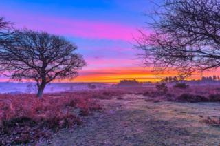 Multi-coloured Sunrise over fields