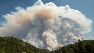 A large pyrocumulus cloud hangs above forest near Redding, California during the Carr fire in 2018
