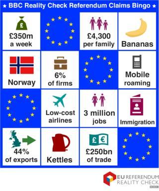 EU Referendum bingo card