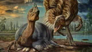 illustration issued by the University of Calgary of an artists impression of a nesting Beibeilong sinensis dinosaur incubating its eggs.