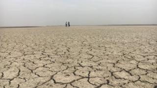 Campo seco em Gujarat