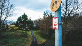Знак эльфов на дорожке