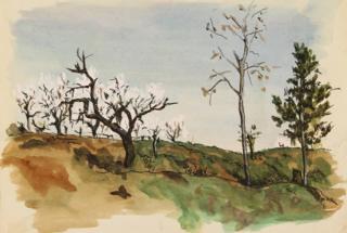 Springtime in Castrocaro, 1945