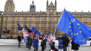 Brexit protestors outside Westminster