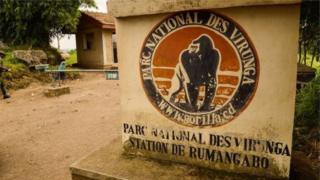 Walinzi wanane wameuawa katika hifadhi ya taifa ya Virunga mwaka 2018