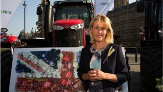 Don't sacrifice us for trade deal, say UK farmers