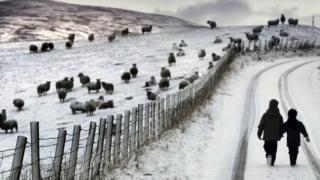 Kids on snowy road