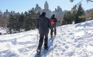 ニューヨークのセントラル・パークでスキー(24日)