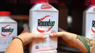 File photo taken on July 9, 2018, shows an employee placing Roundup products on a shelf at a store in San Rafael, California
