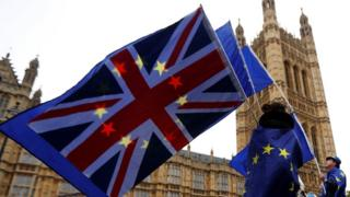 Pro-Remain protest outside Houses of Parliament