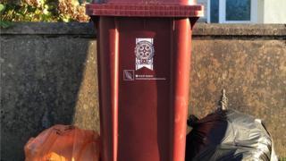 Pembrokeshire bins
