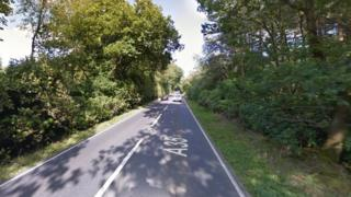 A35 near Bere Regis
