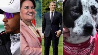 Hamilton, Aksener, Macron