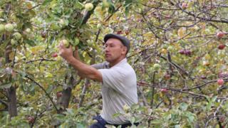 Кыргызстанда ишкерликтин 93 пайызы чакан бизнеске туура келет