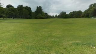 Cooper's Field