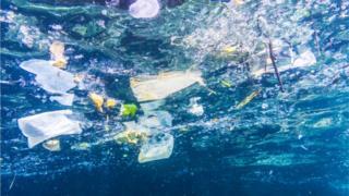 plastics in the sea