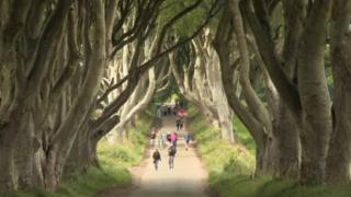 Tourists at the Dark Hedges in County Antrim