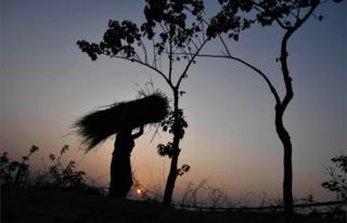 An Indian woman carries haystack on her head during sunset in Kushiyani village in Morigaon district of Assam on December 28, 2018