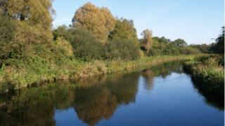 River Test near Kings Somborne
