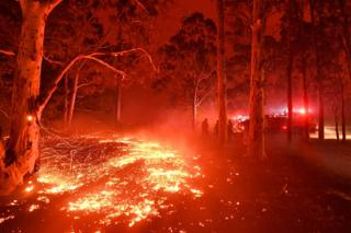 Burning embers cover the ground as firefighters battle against bushfires
