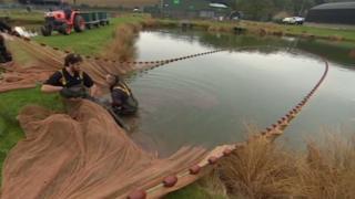 fish farm ponds