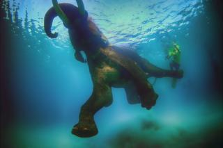"Elephant ""Rajan"" swimming off the Andaman Islands, India"