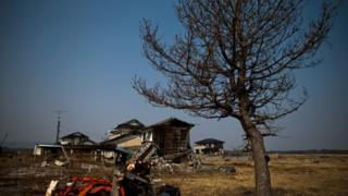 A picture of a house in Odaka in 2013 after it was devastated by the 2011 Fukushima nuclear disaster