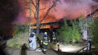Flames ripping through the monkey house at Krefeld Zoo