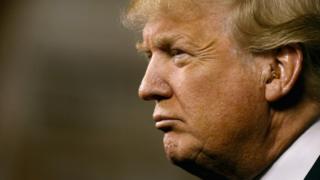 Donald Trump in profile