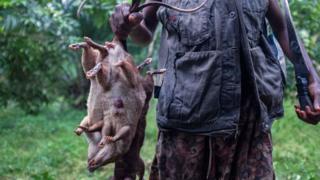 Man wey hold bush rats.