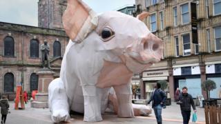 Manchester piglet