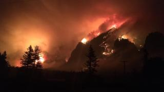 the wildfire