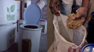 Iniciativa encabeçada por mulheres está salvando vidas e, ao mesmo tempo, fertilizando solo a partir de esgoto.